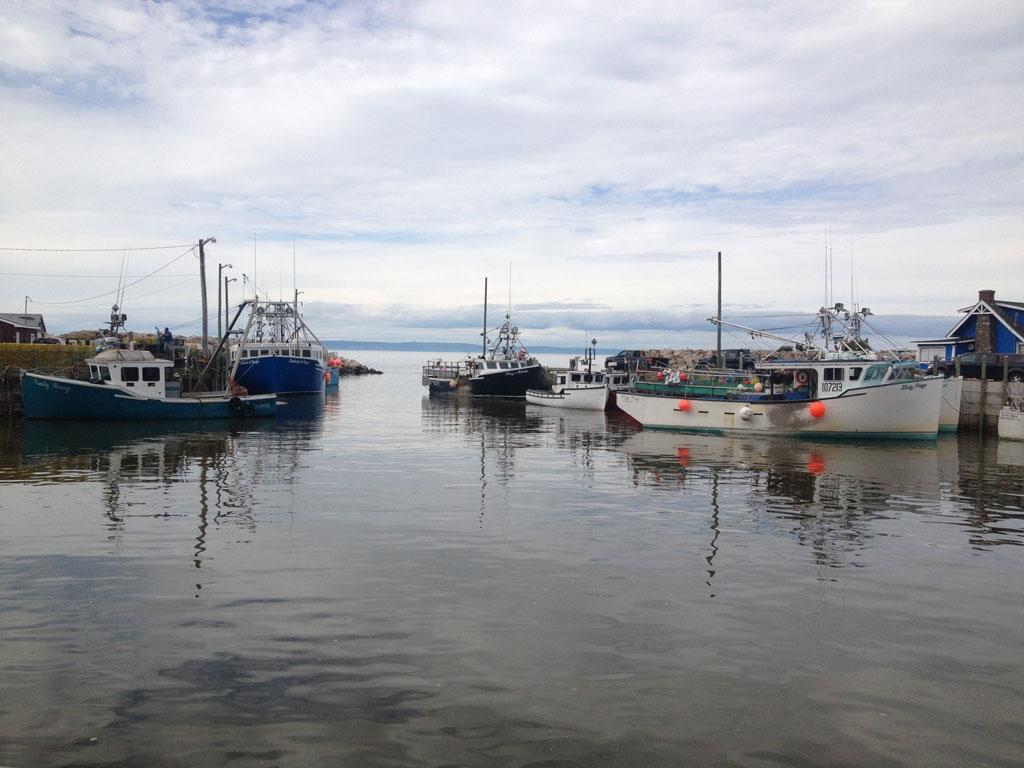 Fundy Tide