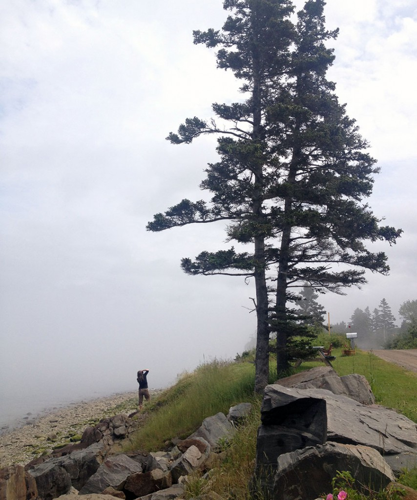 Beach and Fog at Black Rock