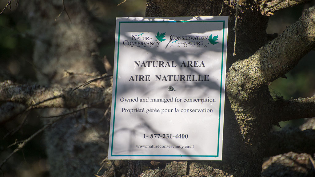 ProspectNatureSign4003