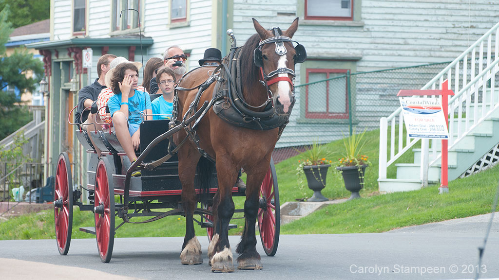 Lunenburg Carrage