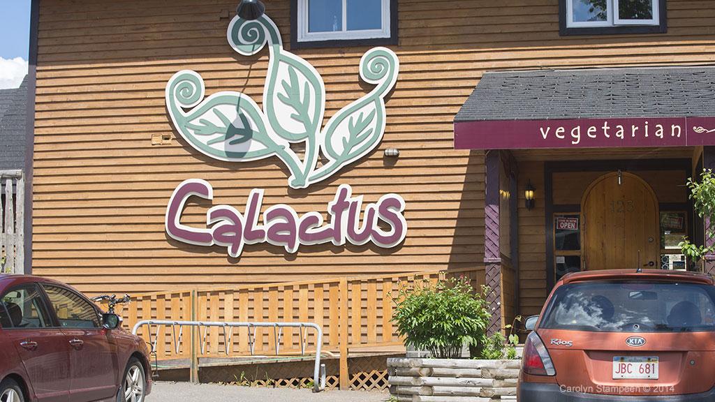 Calactus Restauraunt Moncton