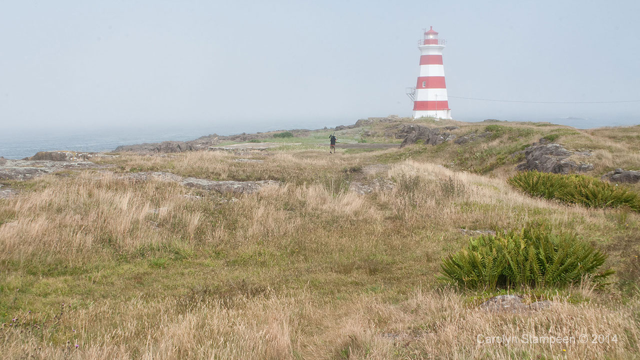 Western Light, Brier Island