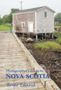 Brier Island Travel Guide