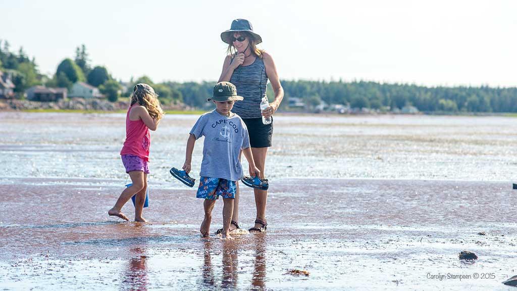 Beach Walk Nova Scotia