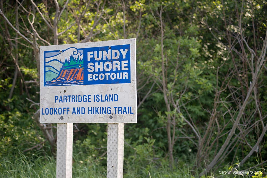 partridge island hiking trail