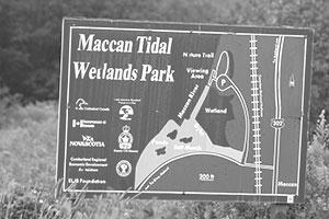 Maccan Tidal Wetlands Park