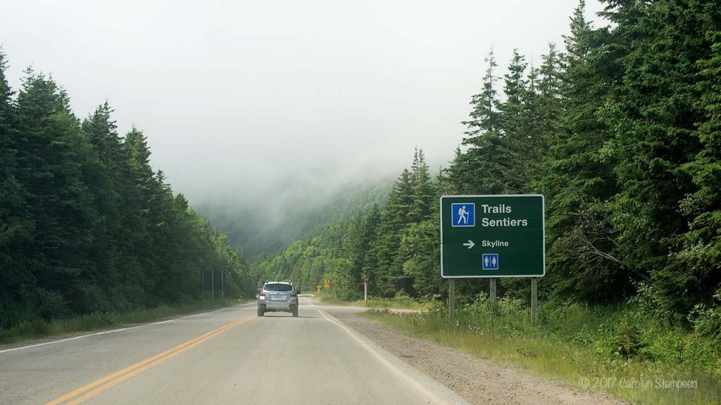 Skyline Trail Sign 8574