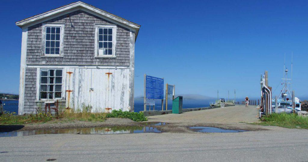 Experience Nova Scotia Brier Island